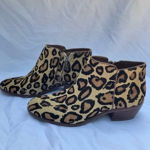 Sam Edelman Shoes - San Edelman Leopard Booties